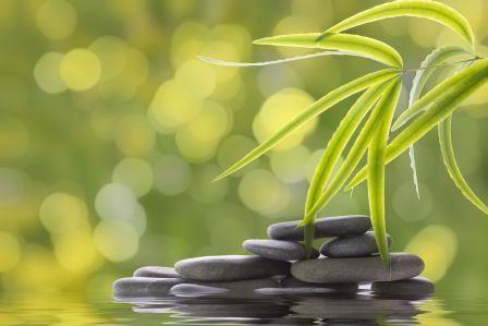 construire-zen-alsamaison